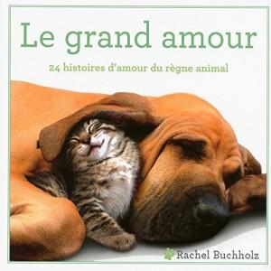 """Afficher """"Le grand amour"""""""