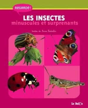 """Afficher """"Les insectes minuscules et surprenants"""""""
