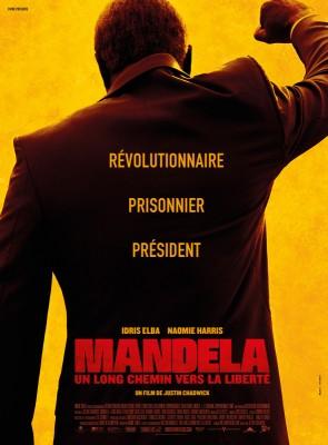 """Afficher """"Mandela, un long chemin vers la liberté DVD"""""""