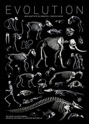 "Afficher ""Evolution"""