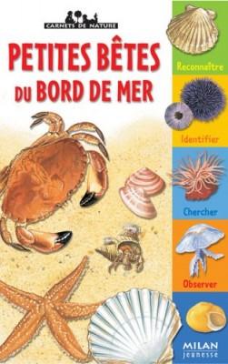 """Afficher """"Petites bêtes du bord de mer"""""""