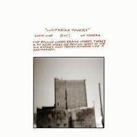 "Afficher ""Luciferian towers"""
