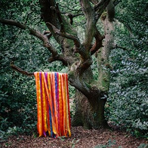 vignette de 'The animal spirits (James Holden)'