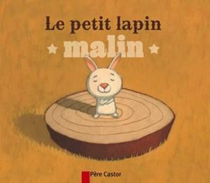 """Afficher """"Le petit lapin malin"""""""