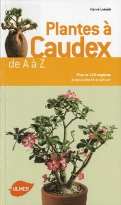 """Afficher """"Plantes à caudex de A à Z"""""""