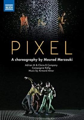 vignette de 'Pixel (Mourad Merzouki)'