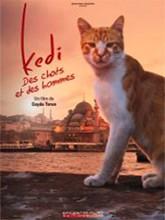 """Afficher """"Kedi-Des chats et des hommes"""""""