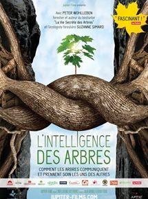 """Afficher """"L'Intelligence des arbres"""""""