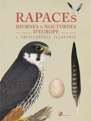 """Afficher """"Rapaces diurnes & nocturnes d'Europe"""""""