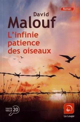 """Afficher """"L'Infinie patience des oiseaux"""""""
