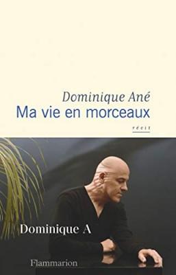vignette de 'Ma vie en morceaux (Dominique Ané)'