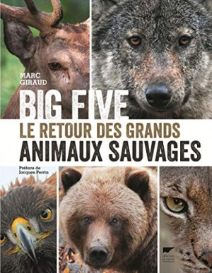 "Afficher ""Big five"""