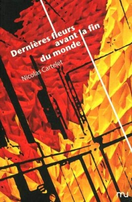 """Afficher """"Dernières fleurs avant la fin du monde"""""""