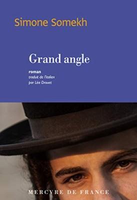 vignette de 'Grand angle (Simone Somekh)'