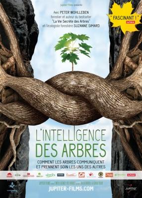 vignette de 'L'intelligence des arbres (Julia Dordel)'
