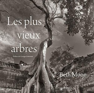 vignette de 'Les plus vieux arbres (Beth Moon)'