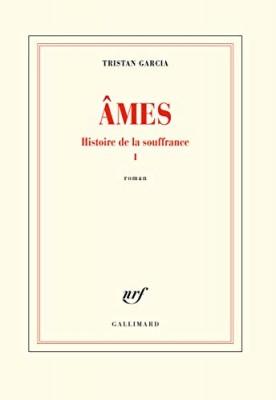 """Afficher """"Histoire de la souffrance n° 1 Ames"""""""