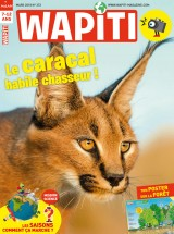 "Afficher ""Wapiti n° 372 LE CARACAL HABILE CHASSEUR"""