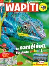 """Afficher """"Wapiti n° 379 Le caméléon, acrobate coloré !"""""""