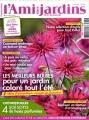 """Afficher """"L'Ami des jardins et de la maison n° 1004 Les Meilleurs bulbes pour un jardin coloré tout l'été (mars 2011)"""""""