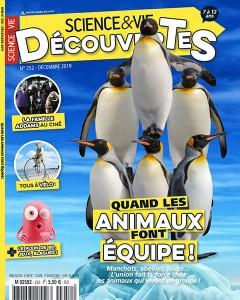 """Afficher """"Science et Vie Découvertes n° 252 Science et Vie Découvertes - décembre 2019"""""""