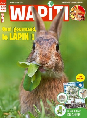 """Afficher """"WAPITI n° 396"""""""
